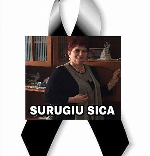 Fotografie preluată de pe contul de facebook Saj Vrancea