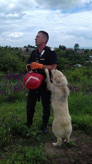 Iată cum mulțumește câinele salvatorului său