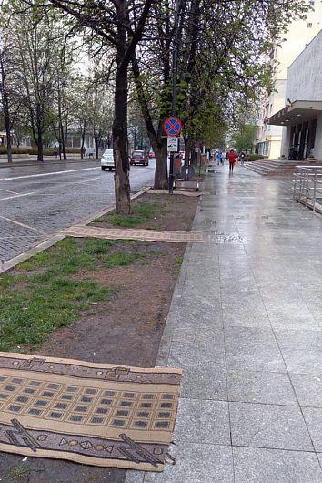 Foto:Ștefan Borcea