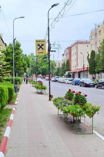 Foto: Incidentul a avut loc în zona unei treceri de pietoni din zona centrala dinPanciu