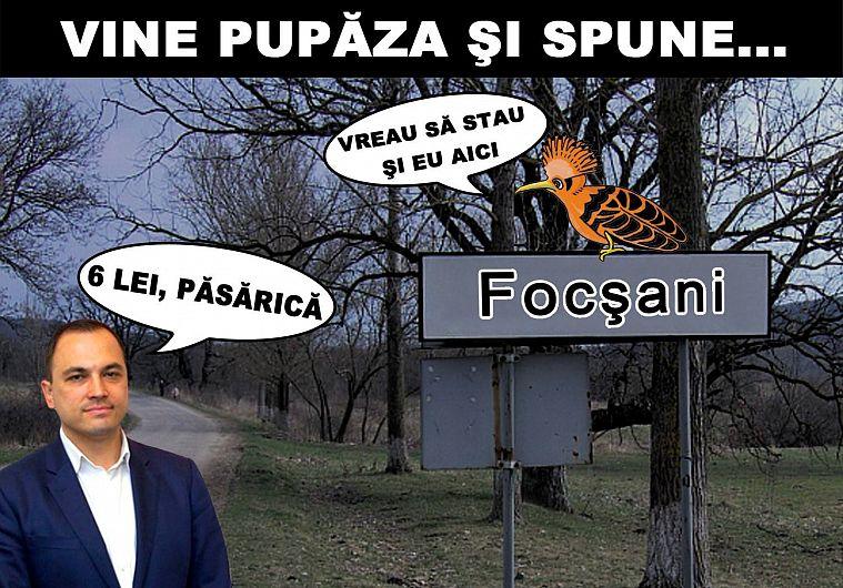 Fotografie preluată de pe contul de facebookTNL Vrancea
