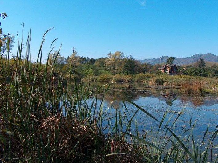 """""""Lacul lui Giurgiu"""", se află pe teritoriul comunei Jitia, în satul Cerbu-Plai o formă alungită și o adâncime de cca. 2,5 m.-foto:Pantelimon Sorin"""