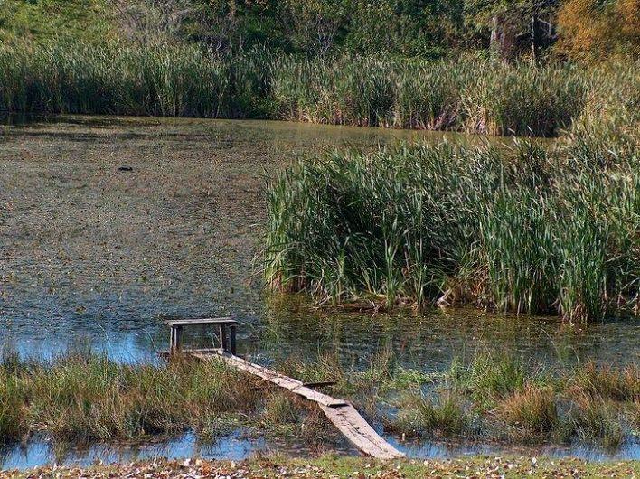 """""""Lacul de la Cruce"""", are formă circulară și lipsit în totalitate de vegetație.-foto:Pantelimon Sorin"""