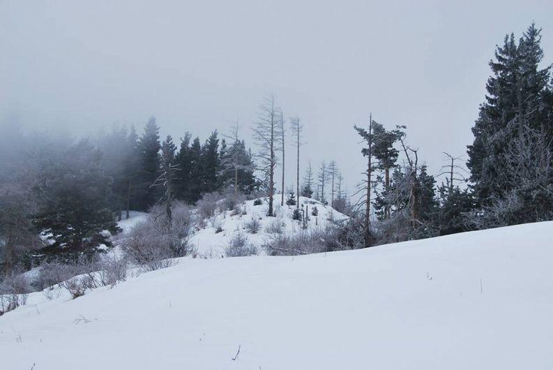 Masa lui Bucur este situată pe creasta muntelui Piatra Penei, din Masivul Furu-foto Pantelimon Sorin contul de facebook