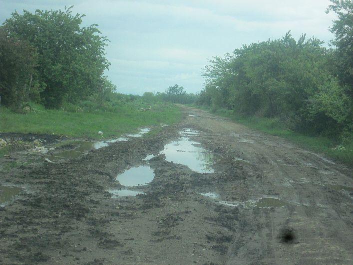 Foto 2 drum din Bogza la pășunea satului