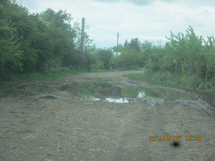 Foto 8 drum din Bogza la pășunea satului