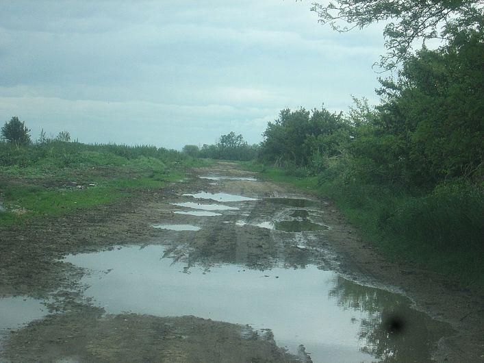 Foto 4 drum din Bogza la pășunea satului
