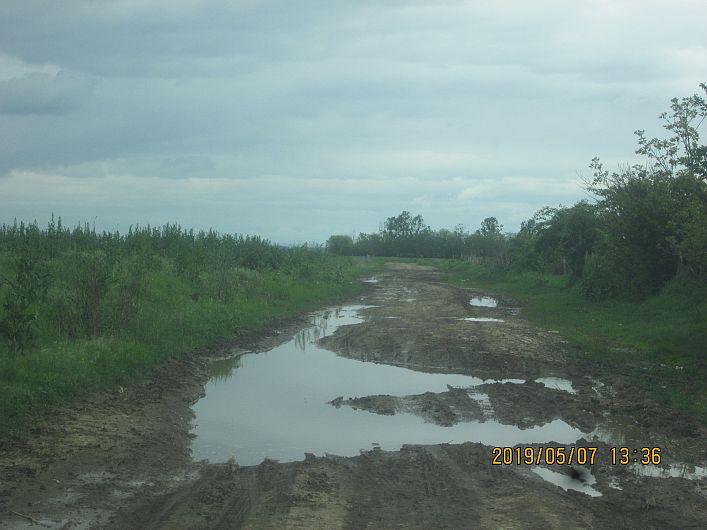 Foto 6 drum din Bogza la pășunea satului