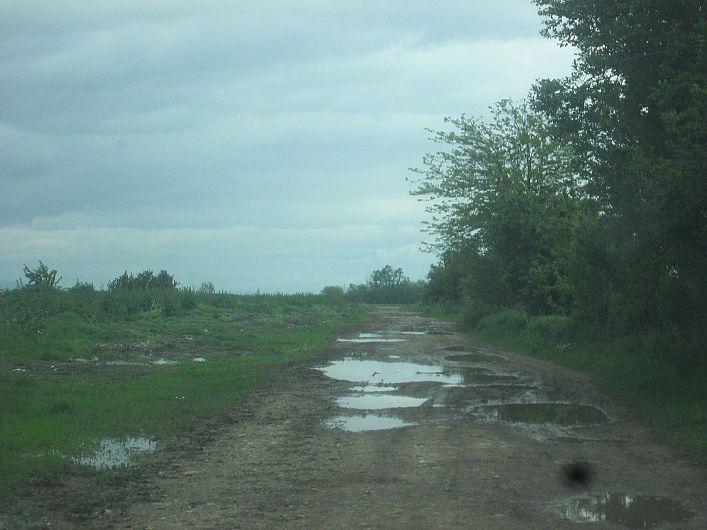Foto 3 drum din Bogza la pășunea satului