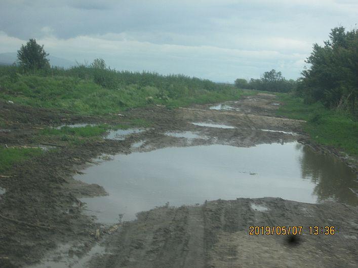 Foto 5 drum din Bogza la pășunea satului