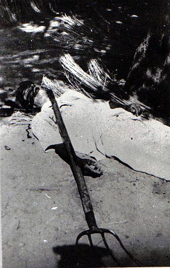 Țăran executat în timpul revoltelor împotriva colectivizării Sursă foto: Fototeca online a comunismului românesc, fotografia #NA028