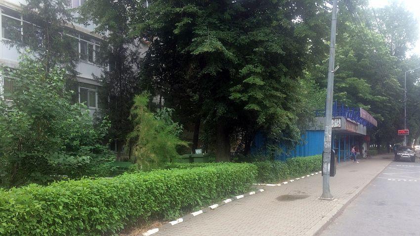 Foto: Zona în care a născut femeia se află în cartierul Sud din Focșani în zona blocurilor M