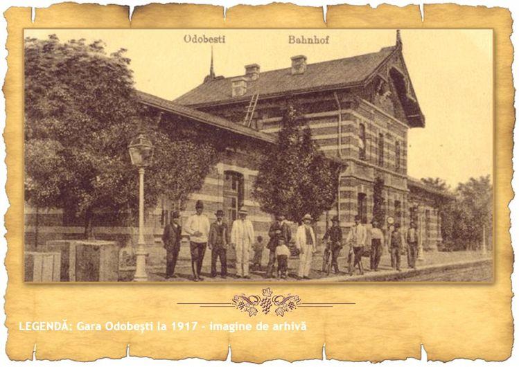 Foto preluată de pe http://www.podgoriivrancene.ro/linia-vinului/