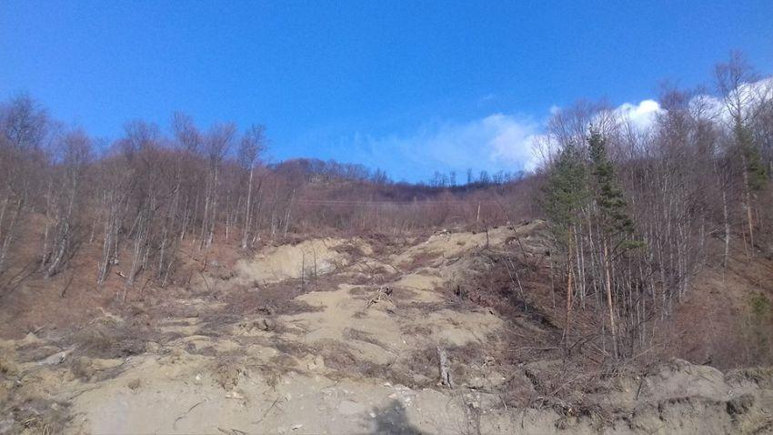 Ca urmarea a defrişărilor masive criza ecologică se acutizează tot mai vertiginos, ducând la intensificarea proceselor de erodare a solurilor.-Foto 8: Pantelimon Sorin