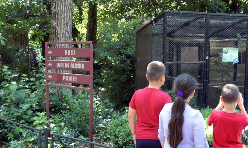 Foto: Grădina Zoologică a fost o adevărată provocare