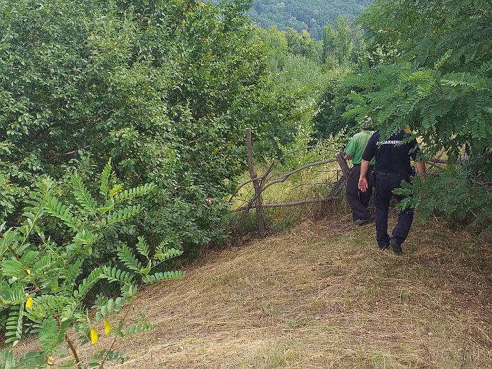 Foto Inspectoratului de JandarmiJudețean (IJJ) Vrancea