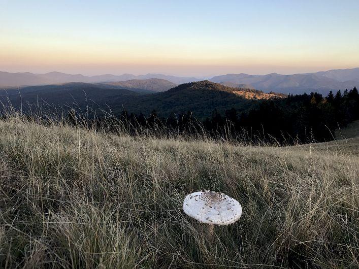 Foto:Vrancea neștiută-Munții Vrancei 2
