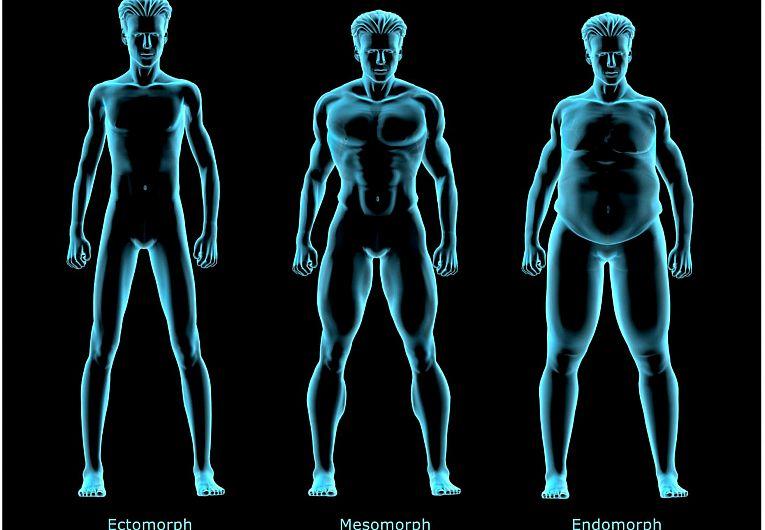 alege tipul tău de corp pierde în greutate