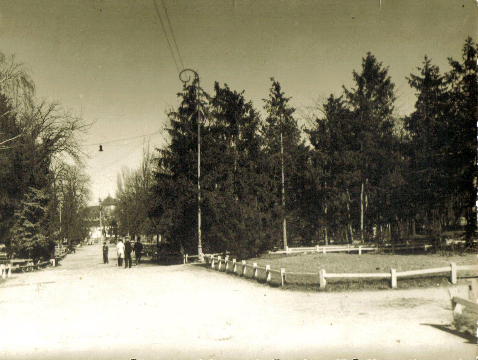 Gradina Publica intr-o poza facuta de Franz Xavier Koroschetz in anii 1920-1930
